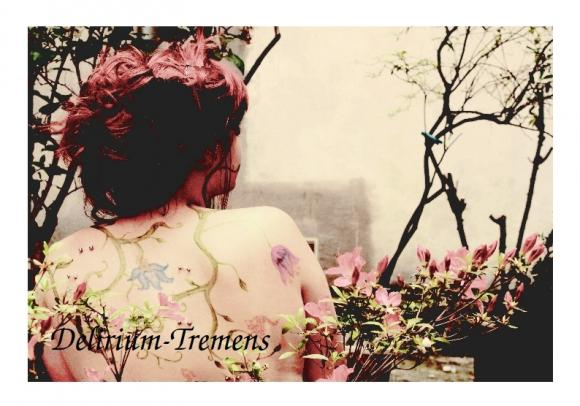 http://delirium-tremens.cowblog.fr/images/IMG1884.jpg