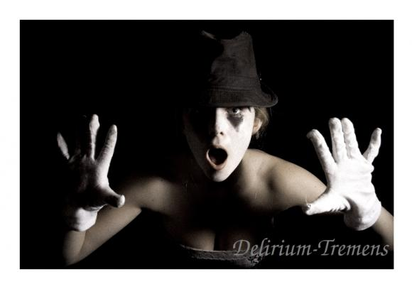 http://delirium-tremens.cowblog.fr/images/IMG4626.jpg